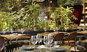 121.Restaurante_elBotanico_Medellin
