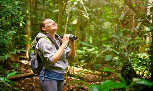Hiker watching through binoculars wild birds in the jungle.